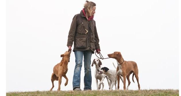 Johanna-Esser-Online-Hundetraining-Erfahrungsbericht